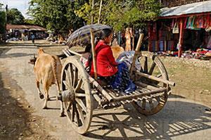 Putao-myanmar